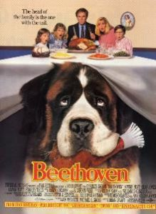dog movie, best dog movies, movies about dogs