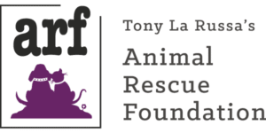 best animal charities