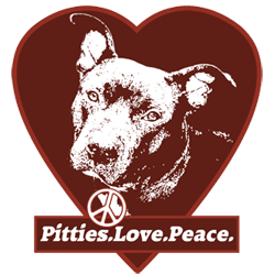 best dog charities