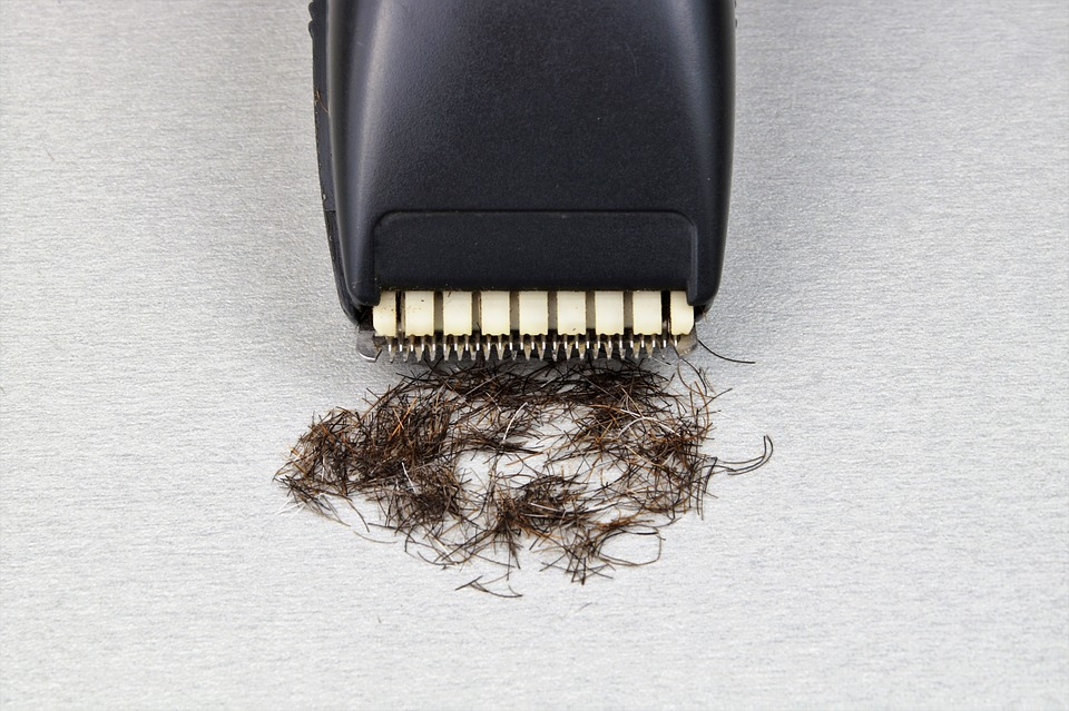 electric razor with shave hair